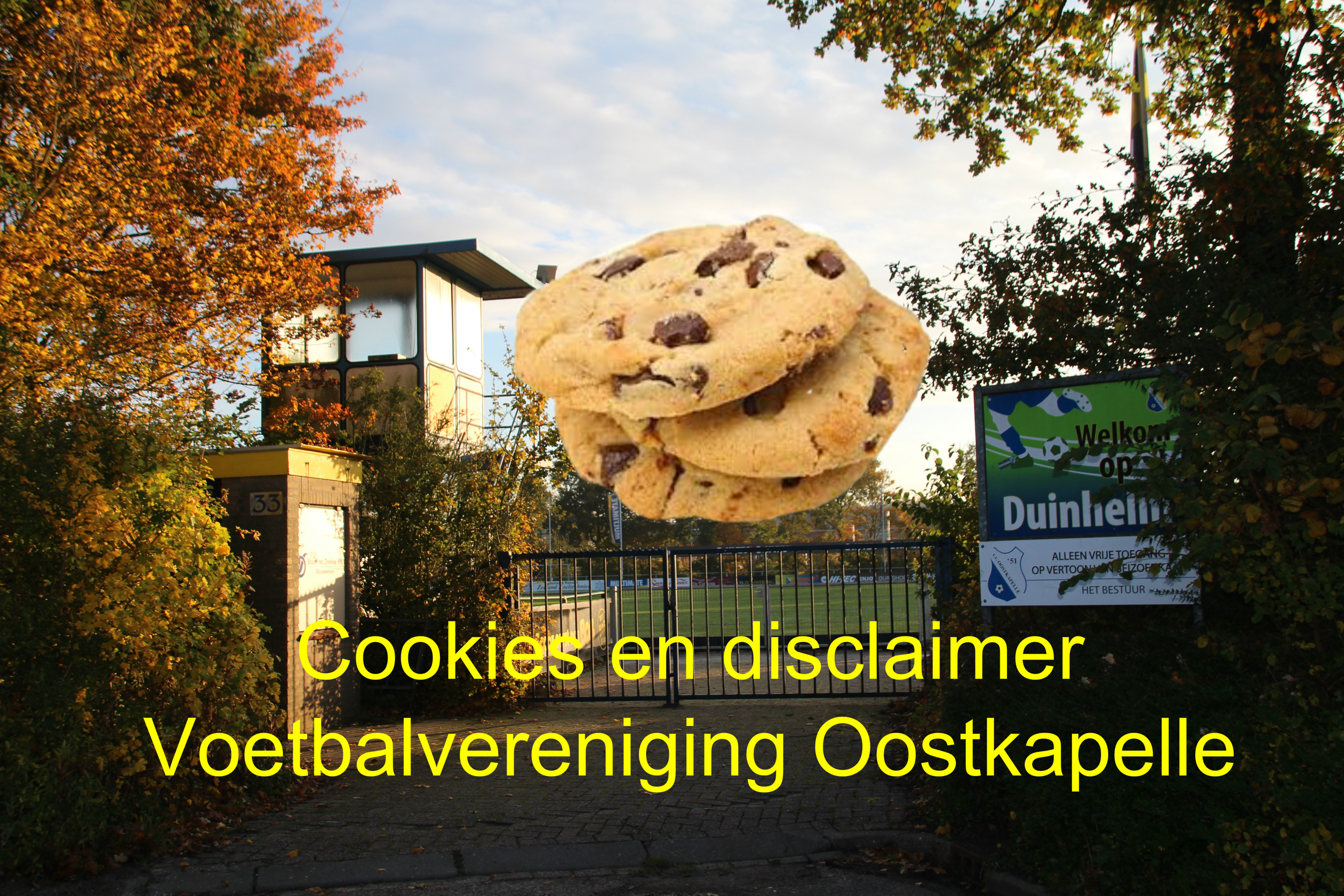 Cookies en disclaimer VVO